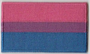 Bisexual Pride Flag Embroidered Flag Patch, style 04